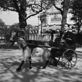 Salvatore Dali, Paris 1953, Quelle: Pinterest