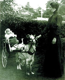 Millvina Dean, England 1912