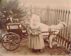 United Kingdom, Dorothy Morgan, Ascension Island 1892