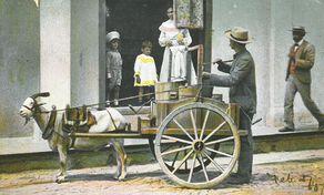 Milchverkäufer in El Venedor de Leche, Cuba 1907