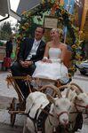 Wehrer Hochzeitsmesse