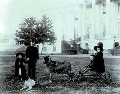 Weißes Haus Washington D.C. ca. 1889 - 1893